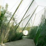 Spidernethewood  -  R&Sie(n)  -  Paris