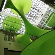 Green Void – LAVA – Australia