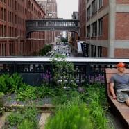 Highline NY ya Inaugurado – Diller Scofidio + de Renfro – US