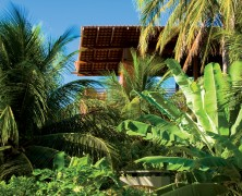 Tropical House – Camarim Architects – Brasil