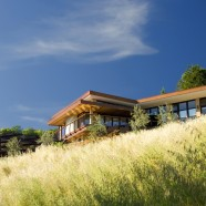 Mill Valley Hillside – McGlashan Architecture – US