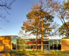Oak Forest Library – Natalye Appel +  Architect Works + James Ray – US