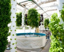 Green Sky Growers: The Future of Farming